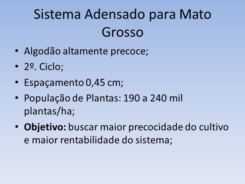 Sistema Adensado para Mato Grosso Algodão altamente precoce; 2º. Ciclo; Espaçamento 0,45 cm; População de Plantas: 190 a 240 mil plantas/ha; Objetivo: