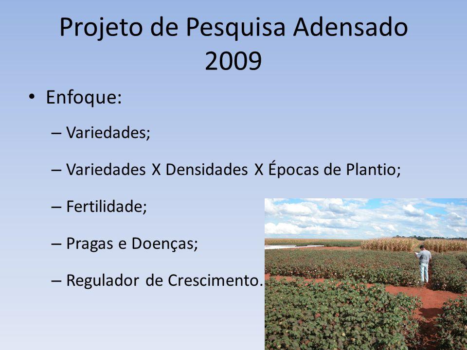Projeto de Pesquisa Adensado 2009 Enfoque: – Variedades; – Variedades X Densidades X Épocas de Plantio; – Fertilidade; – Pragas e Doenças; – Regulador