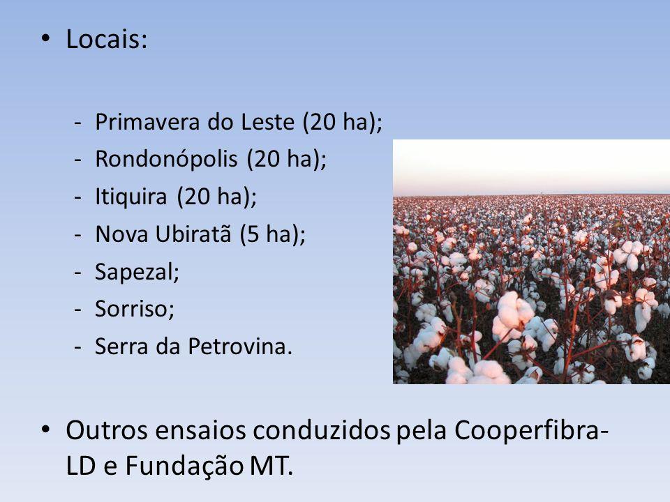 Locais: -Primavera do Leste (20 ha); -Rondonópolis (20 ha); -Itiquira (20 ha); -Nova Ubiratã (5 ha); -Sapezal; -Sorriso; -Serra da Petrovina. Outros e