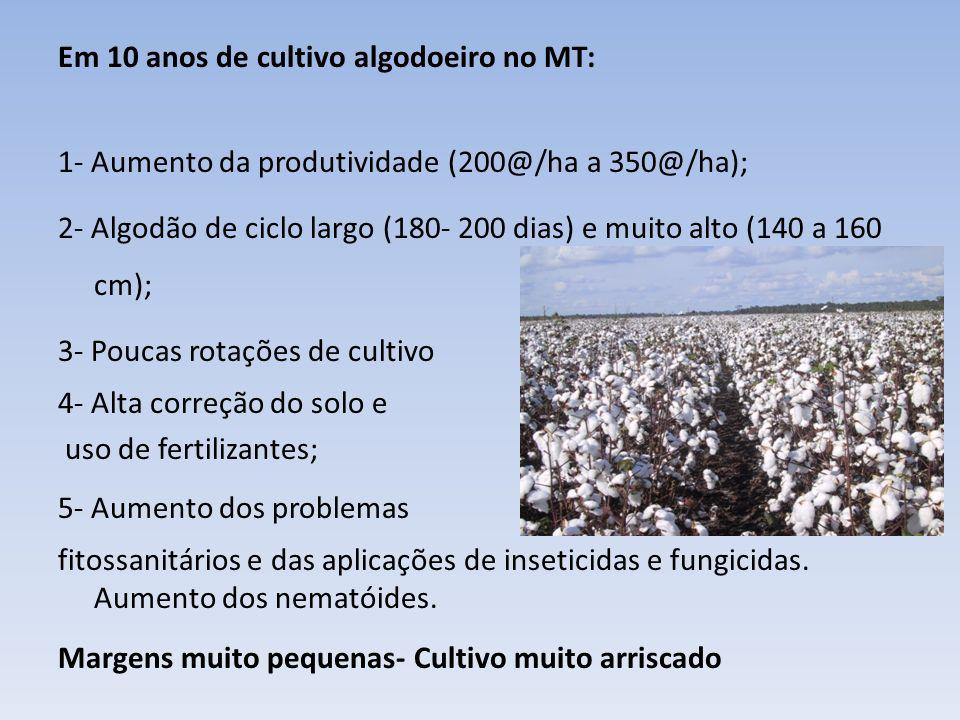 Em 10 anos de cultivo algodoeiro no MT: 1- Aumento da produtividade (200@/ha a 350@/ha); 2- Algodão de ciclo largo (180- 200 dias) e muito alto (140 a