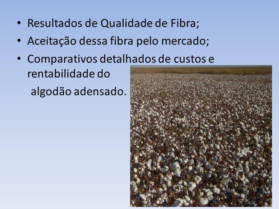 Resultados de Qualidade de Fibra; Aceitação dessa fibra pelo mercado; Comparativos detalhados de custos e rentabilidade do algodão adensado.