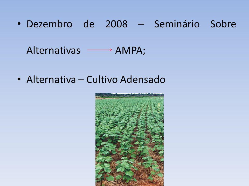 Dezembro de 2008 – Seminário Sobre Alternativas AMPA; Alternativa – Cultivo Adensado