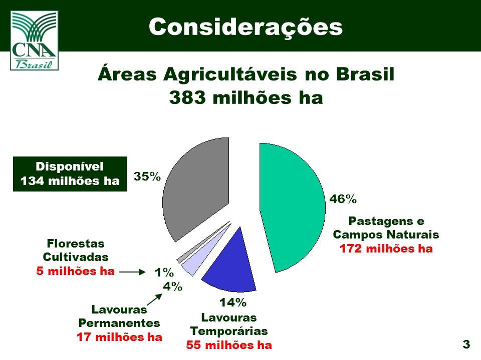 3 Considerações Pastagens e Campos Naturais 172 milhões ha Disponível 134 milhões ha Lavouras Temporárias 55 milhões ha Florestas Cultivadas 5 milhões ha Lavouras Permanentes 17 milhões ha 14% Áreas Agricultáveis no Brasil 383 milhões ha