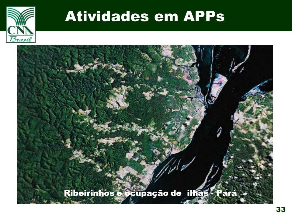 33 Atividades em APPs Ribeirinhos e ocupação de ilhas - Pará