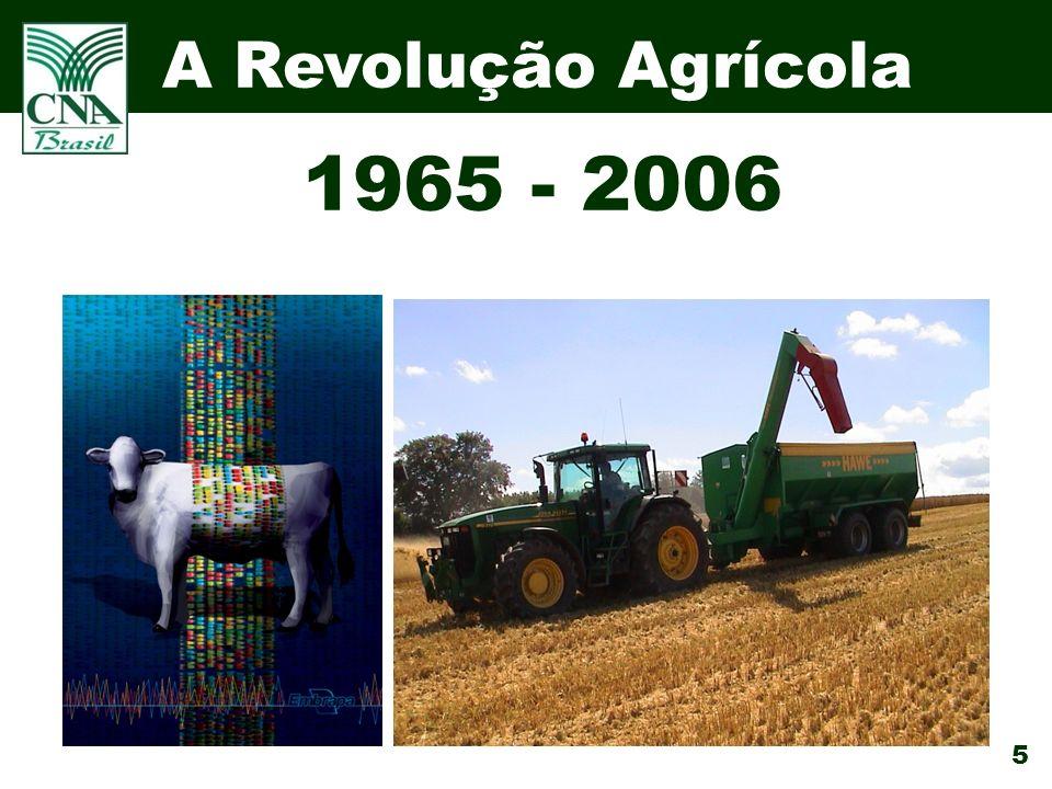 5 A Revolução Agrícola 1965 - 2006