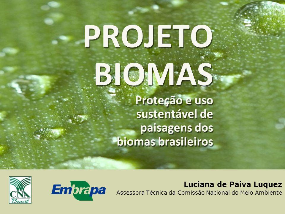 1 Luciana de Paiva Luquez Assessora Técnica da Comissão Nacional do Meio Ambiente PROJETO BIOMAS Proteção e uso sustentável de paisagens dos biomas br