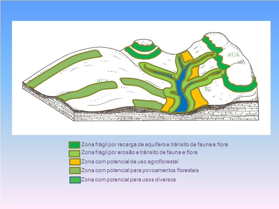 S RL AUA Zona frágil por recarga de aquífero e trânsito de fauna e flora Zona frágil por erosão e trânsito de fauna e flora Zona com potencial de uso