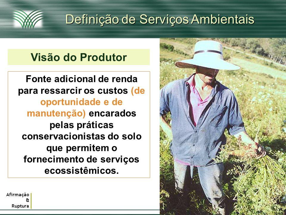 Afirmação & Ruptura Definição de Serviços Ambientais Visão do Produtor Fonte adicional de renda para ressarcir os custos (de oportunidade e de manuten