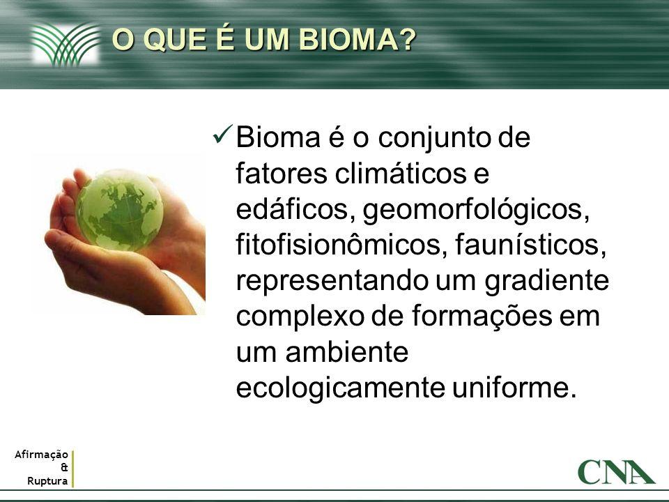 Afirmação & Ruptura O QUE É UM BIOMA? Bioma é o conjunto de fatores climáticos e edáficos, geomorfológicos, fitofisionômicos, faunísticos, representan