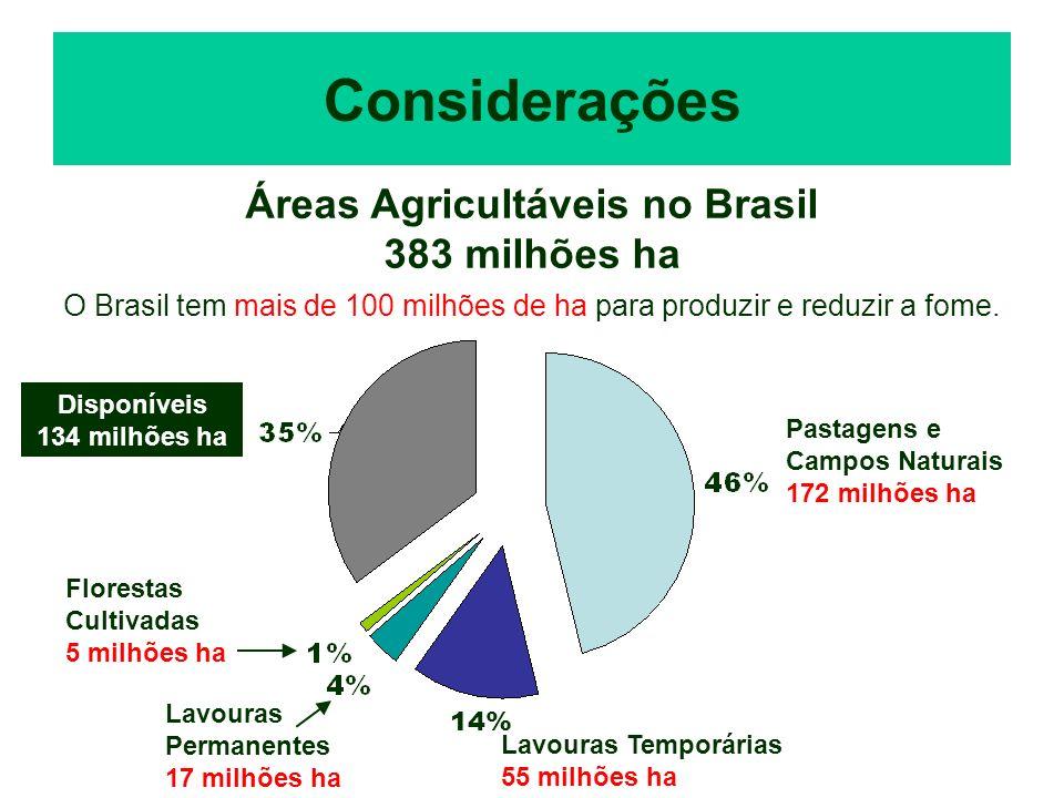 Considerações Áreas Agricultáveis no Brasil 383 milhões ha O Brasil tem mais de 100 milhões de ha para produzir e reduzir a fome. Disponíveis 134 milh