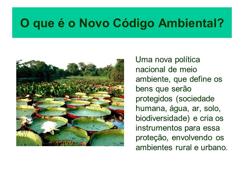 O que é o Novo Código Ambiental? Uma nova política nacional de meio ambiente, que define os bens que serão protegidos (sociedade humana, água, ar, sol