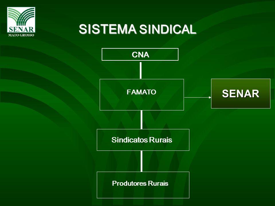CNA FAMATO Sindicatos Rurais Produtores Rurais SISTEMA SINDICAL SENAR