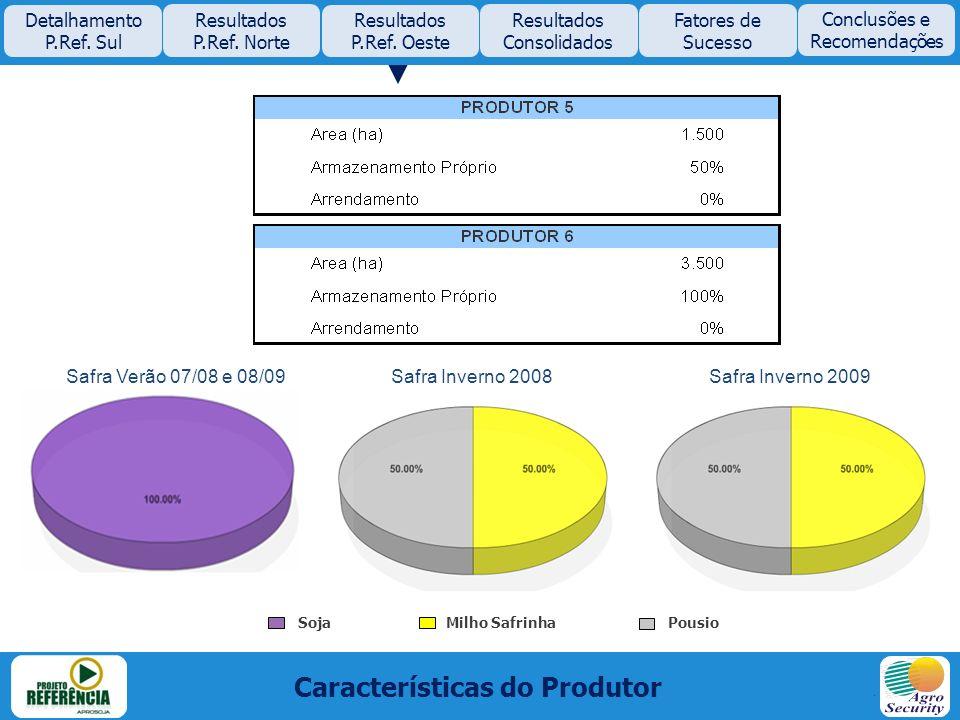 Características do Produtor Safra Verão 07/08 e 08/09Safra Inverno 2008Safra Inverno 2009 Pousio Milho Safrinha Soja Detalhamento P.Ref. Sul Resultado