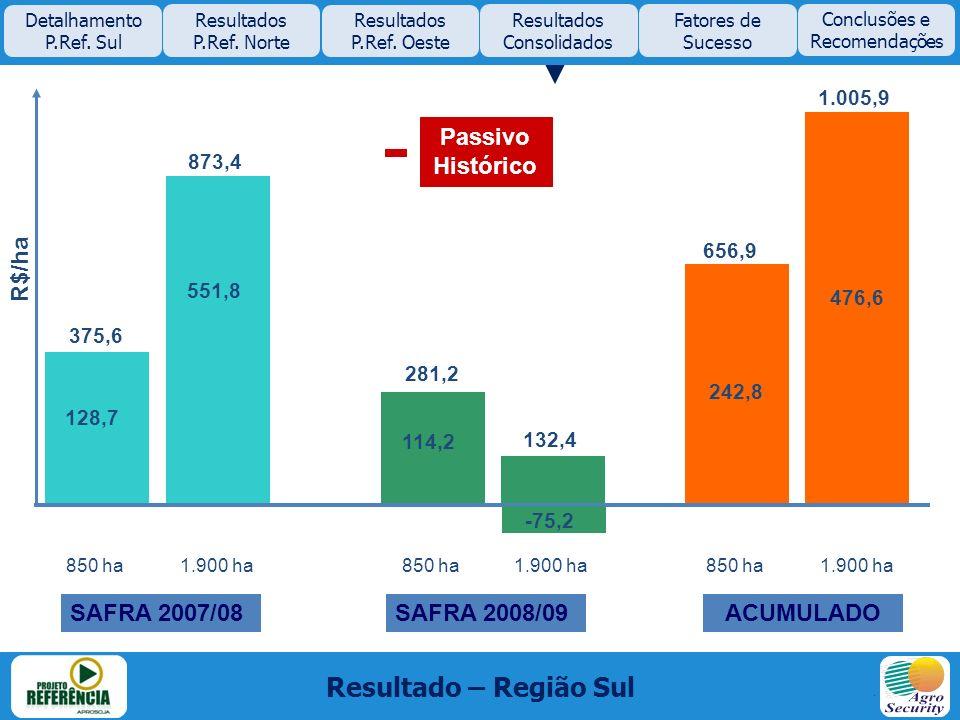 850 ha 1.900 ha 375,6 873,4 281,2 132,4 656,9 R$/ha SAFRA 2007/08SAFRA 2008/09ACUMULADO 128,7 551,8 114,2 -75,2 242,8 476,6 Resultado – Região Sul Det