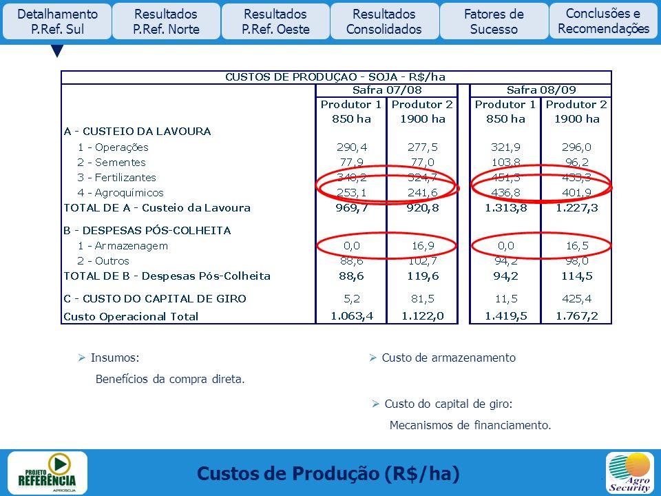 Custos de Produção (R$/ha) Insumos: Benefícios da compra direta. Custo de armazenamento Custo do capital de giro: Mecanismos de financiamento. Detalha