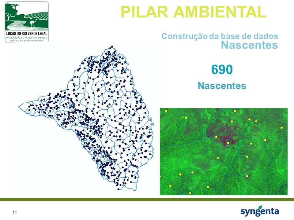 11 PILAR AMBIENTAL Construção da base de dados Nascentes 690 Nascentes