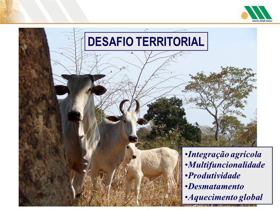 Integração agrícola Multifuncionalidade Produtividade Desmatamento Aquecimento global DESAFIO TERRITORIAL