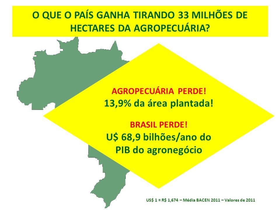 AGROPECUÁRIA PERDE. 13,9% da área plantada. BRASIL PERDE.