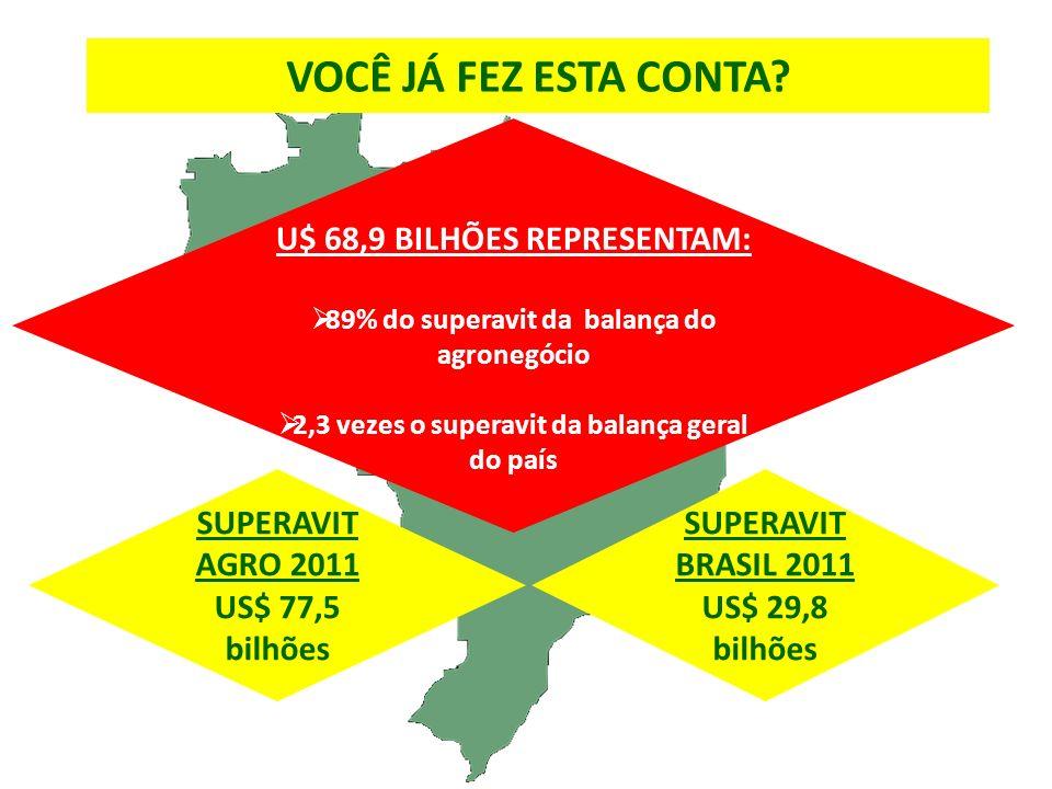 SUPERAVIT AGRO 2011 US$ 77,5 bilhões U$ 68,9 BILHÕES REPRESENTAM: 89% do superavit da balança do agronegócio 2,3 vezes o superavit da balança geral do país SUPERAVIT BRASIL 2011 US$ 29,8 bilhões VOCÊ JÁ FEZ ESTA CONTA