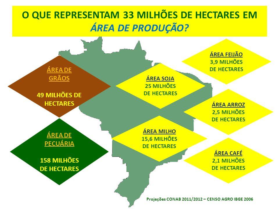 ÁREA ARROZ 2,5 MILHÕES DE HECTARES ÁREA FEIJÃO 3,9 MILHÕES DE HECTARES ÁREA SOJA 25 MILHÕES DE HECTARES ÁREA CAFÉ 2,1 MILHÕES DE HECTARES ÁREA MILHO 15,6 MILHÕES DE HECTARES Projeções CONAB 2011/2012 – CENSO AGRO IBGE 2006 O QUE REPRESENTAM 33 MILHÕES DE HECTARES EM ÁREA DE PRODUÇÃO.