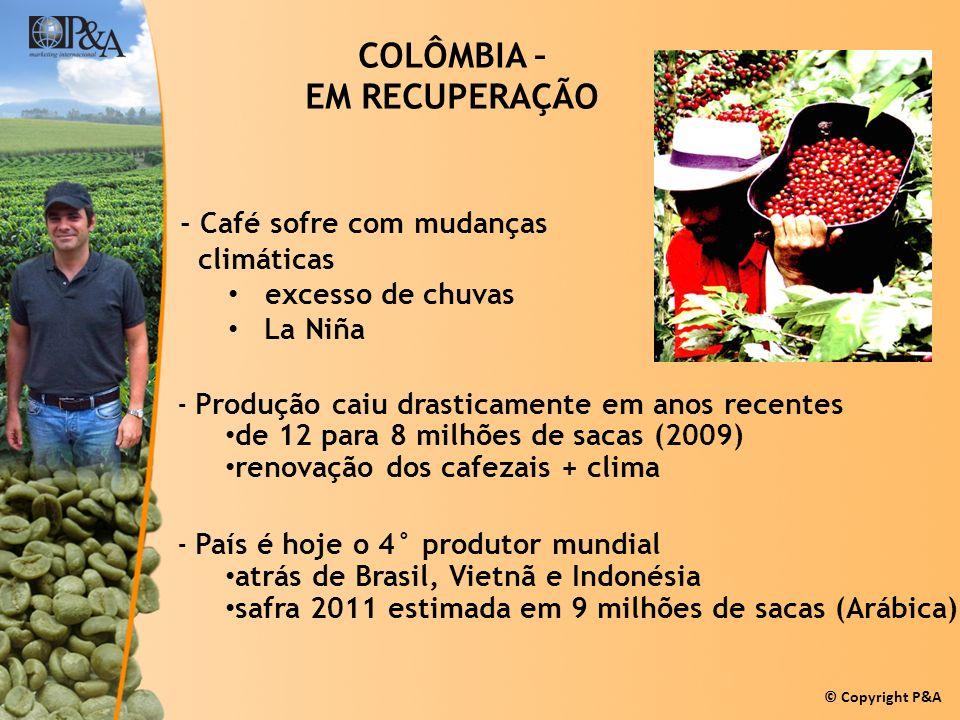 © Copyright P&A COLÔMBIA – EM RECUPERAÇÃO -Produção caiu drasticamente em anos recentes de 12 para 8 milhões de sacas (2009) renovação dos cafezais +