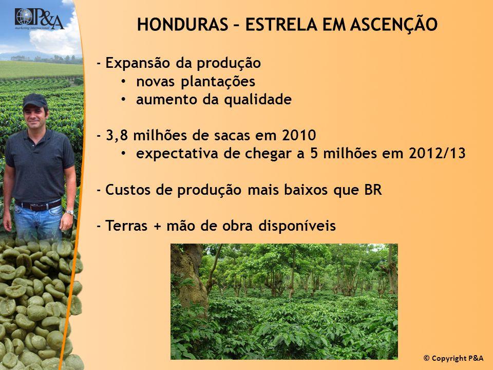 © Copyright P&A HONDURAS – ESTRELA EM ASCENÇÃO -Expansão da produção novas plantações aumento da qualidade -3,8 milhões de sacas em 2010 expectativa d