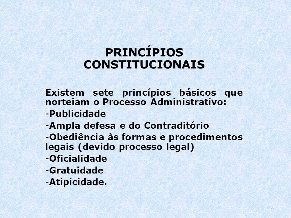 PRINCÍPIOS CONSTITUCIONAIS Existem sete princípios básicos que norteiam o Processo Administrativo: -Publicidade -Ampla defesa e do Contraditório -Obed