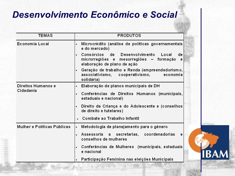 Desenvolvimento Econômico e Social LINHAS DE ATUAÇÃO Economia Local Direitos Humanos e Cidadania Mulher e Políticas Públicas NÚCLEO