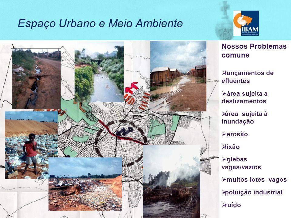 Cidades Sustentáveis - Premissas CRESCER SEM DESTRUIR INTEGRAÇÃO ENTRE SOLUÇÕES PARA PROBLEMAS AMBIENTAIS E SOCIAIS DIÁLOGO ENTRE AS ESTRATÉGIAS DA AGENDA 21 E AS ATUAIS OPÇÕES DE DESENVOLVIMENTO ESPECIFICIDADE DA AGENDA MARROM INCENTIVAR A INOVAÇÃO E A DISSEMINAÇÃO DAS BOAS PRÁTICAS FORTALECIMENTO DA DEMOCRACIA GESTÃO INTEGRADA E PARTICIPATIVA FOCO NA AÇÃO LOCAL MUDANÇA DO ENFOQUE DAS POLÍTICAS DE DESENVOLVIMENTO E PRESERVAÇÃO INFORMAÇÃO PARA A TOMADA DE DECISÃO