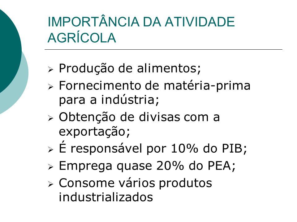 IMPORTÂNCIA DA ATIVIDADE AGRÍCOLA Produção de alimentos; Fornecimento de matéria-prima para a indústria; Obtenção de divisas com a exportação; É responsável por 10% do PIB; Emprega quase 20% do PEA; Consome vários produtos industrializados