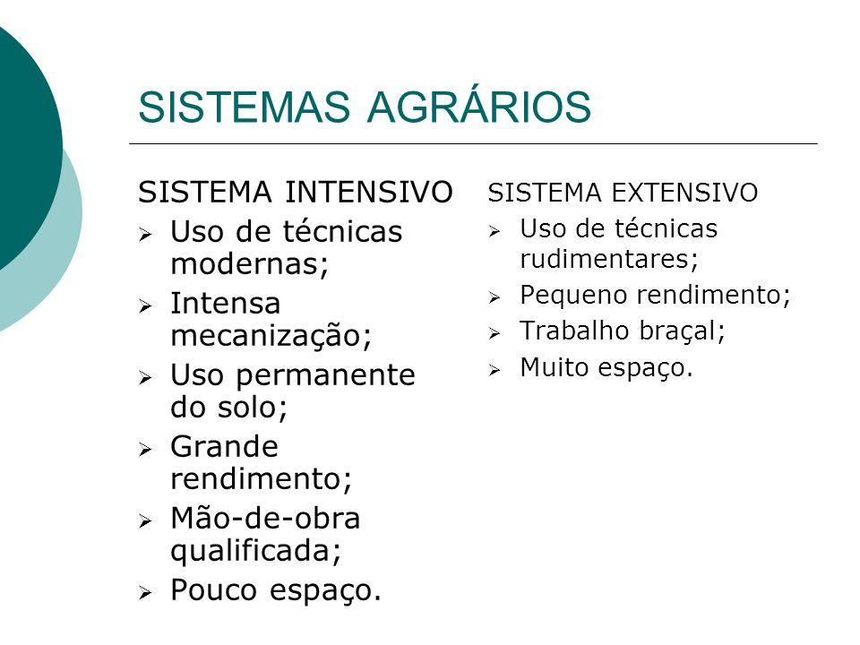 A PLANTATION CARACTERÍSTICAS Monocultura; Exportação; Latifúndio; Grande rendimento; Trabalho assalariado.