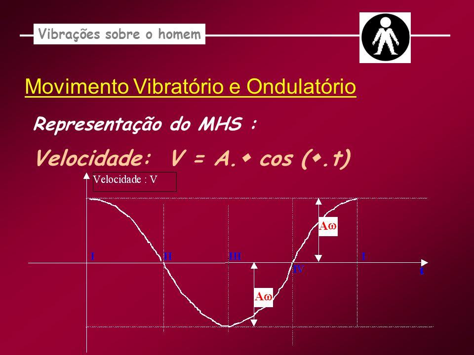 Vibrações sobre o homem Movimento Vibratório e Ondulatório Representação do MHS : Velocidade: V = A. cos (.t)