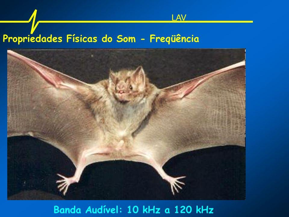 Propriedades Físicas do Som - Freqüência Banda Audível: 10 kHz a 120 kHz LAV