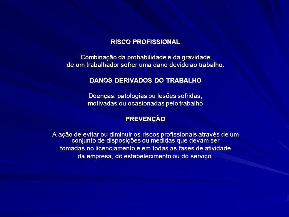 RISCO PROFISSIONAL Combinação da probabilidade e da gravidade de um trabalhador sofrer uma dano devido ao trabalho. DANOS DERIVADOS DO TRABALHO Doença