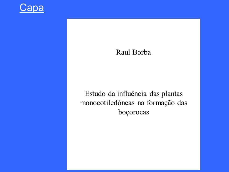 Raul Borba Estudo da influência das plantas monocotiledôneas na formação das boçorocas Capa