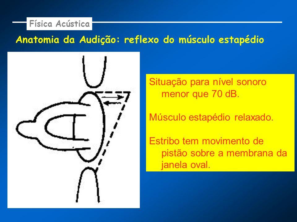 Anatomia da Audição: reflexo do músculo estapédio Física Acústica Situação para nível sonoro menor que 70 dB. Músculo estapédio relaxado. Estribo tem
