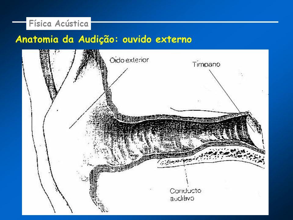 Anatomia da Audição: ouvido externo Física Acústica