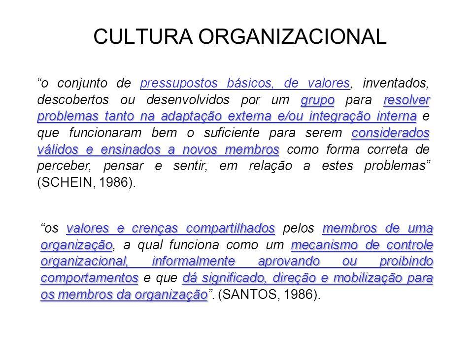 CULTURA ORGANIZACIONAL Elementos da Cultura Organizacional Valores: Valores: indicações do que é importante para se atingir o sucesso.