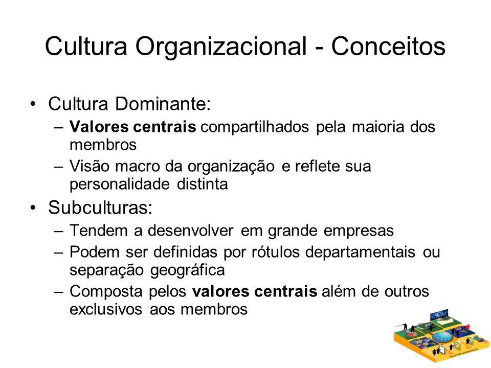 Cultura Organizacional - Conceitos Cultura Dominante: –Valores centrais compartilhados pela maioria dos membros –Visão macro da organização e reflete