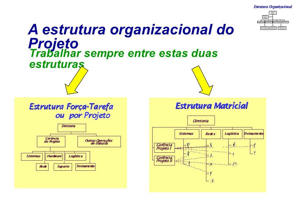 A estrutura organizacional do Projeto Trabalhar sempre entre estas duas estruturas