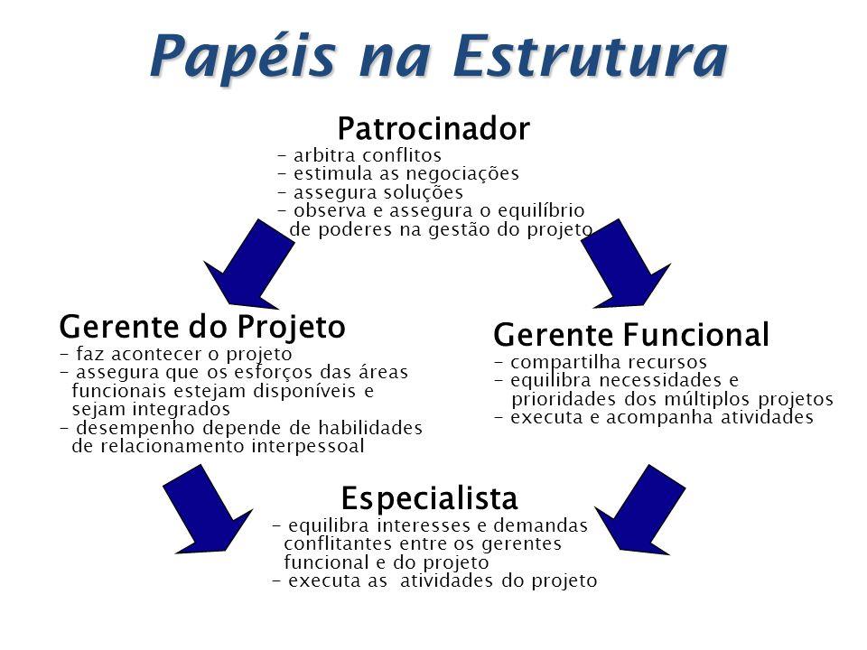Papéis na Estrutura Patrocinador - arbitra conflitos - estimula as negociações - assegura soluções - observa e assegura o equilíbrio de poderes na ges