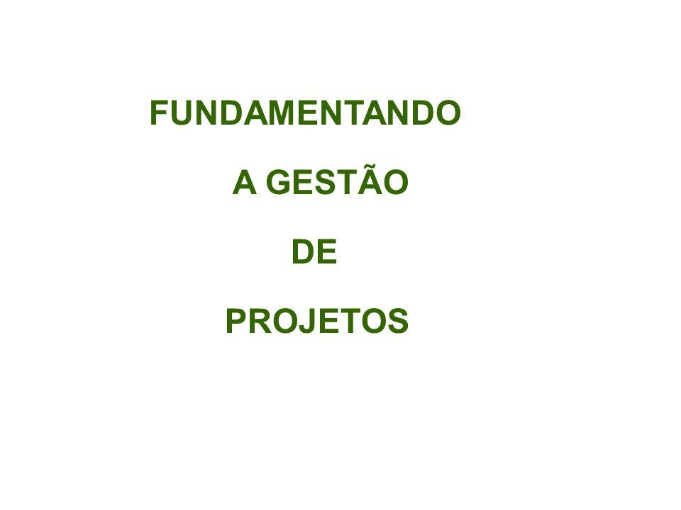 FUNDAMENTANDO A GESTÃO DE PROJETOS FUNDAMENTANDO A GESTÃO DE PROJETOS