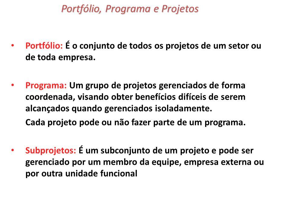 Portfólio: É o conjunto de todos os projetos de um setor ou de toda empresa. Programa: Um grupo de projetos gerenciados de forma coordenada, visando o