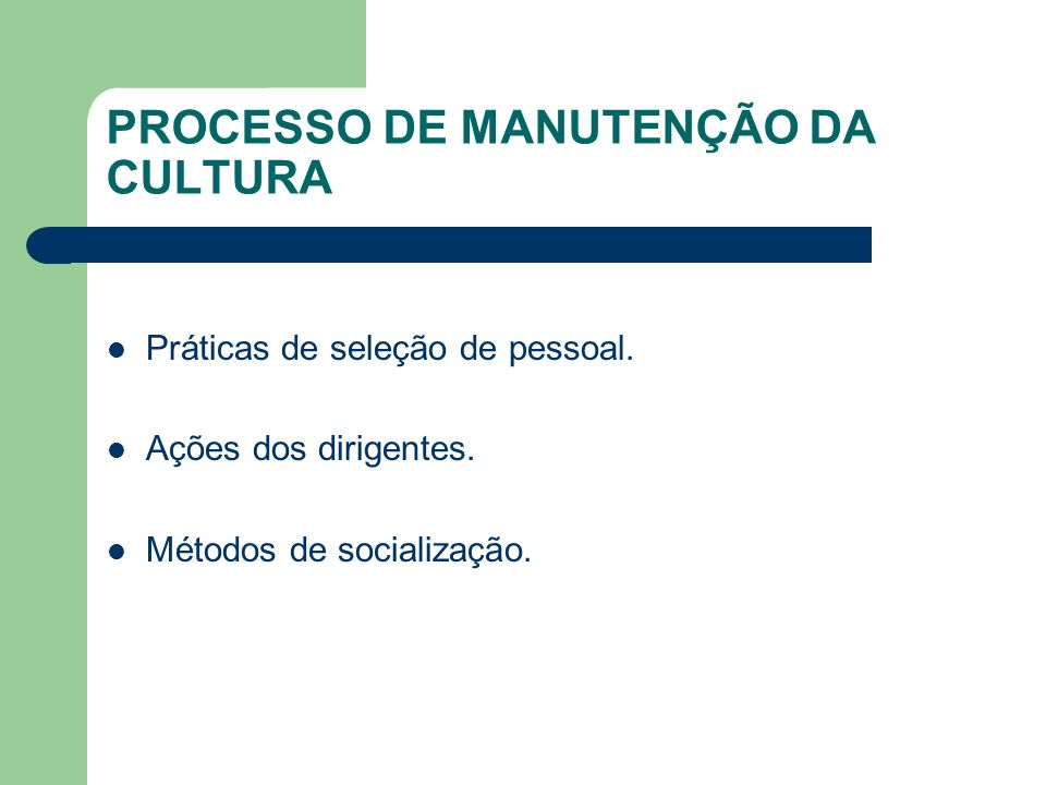 PROCESSO DE MANUTENÇÃO DA CULTURA Práticas de seleção de pessoal. Ações dos dirigentes. Métodos de socialização.