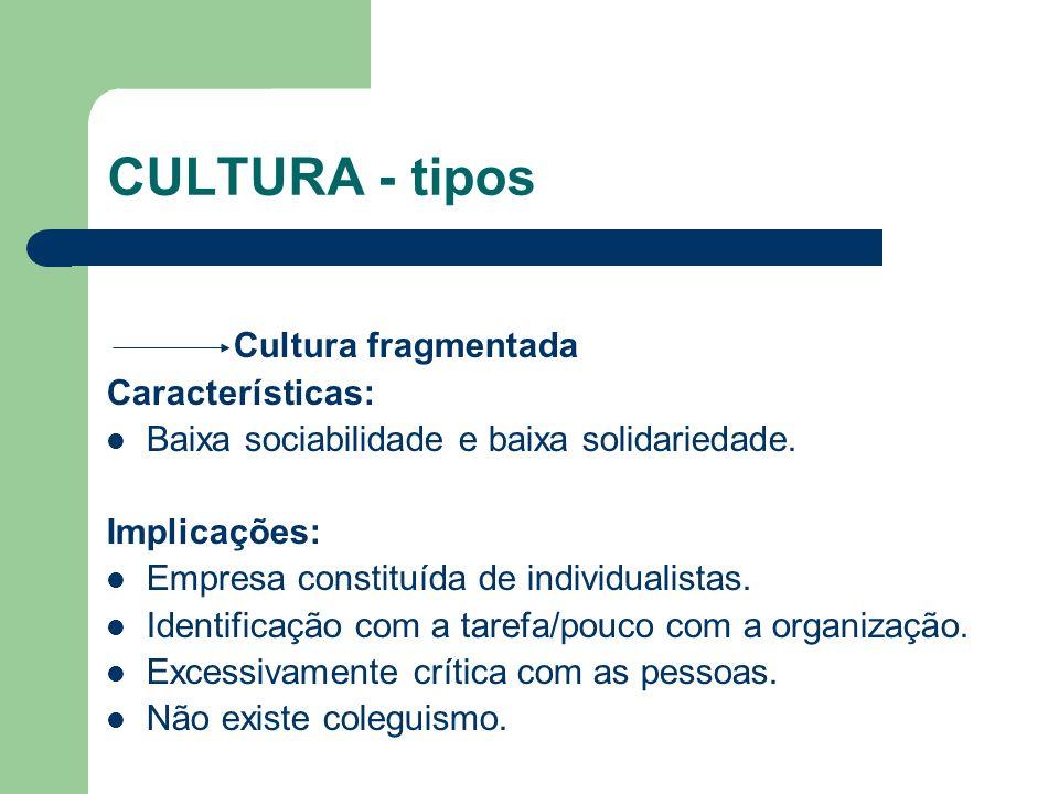 CULTURA - tipos Cultura fragmentada Características: Baixa sociabilidade e baixa solidariedade. Implicações: Empresa constituída de individualistas. I