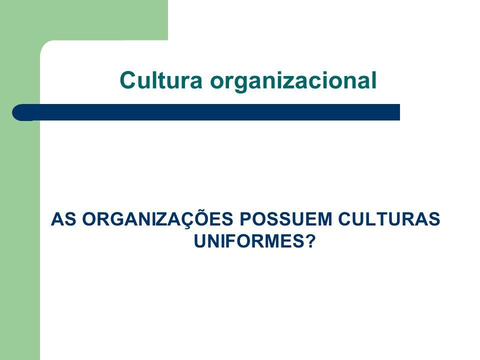 Cultura organizacional – características Inovação e capacidade de assumir riscos.