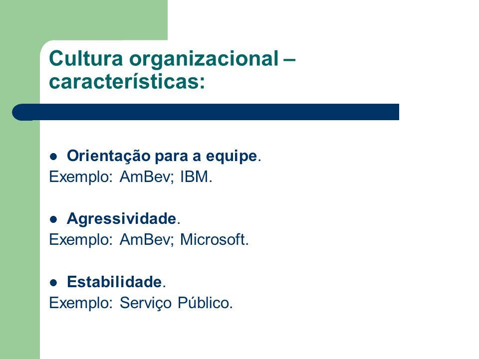 Cultura organizacional – características: Orientação para a equipe. Exemplo: AmBev; IBM. Agressividade. Exemplo: AmBev; Microsoft. Estabilidade. Exemp