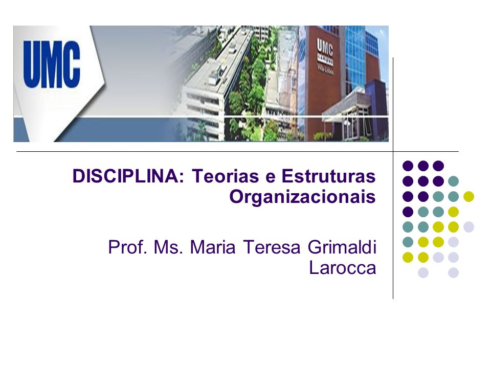 DISCIPLINA: Teorias e Estruturas Organizacionais Prof. Ms. Maria Teresa Grimaldi Larocca