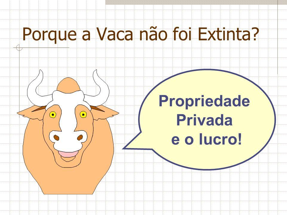 Porque a Vaca não foi Extinta? Propriedade Privada e o lucro!