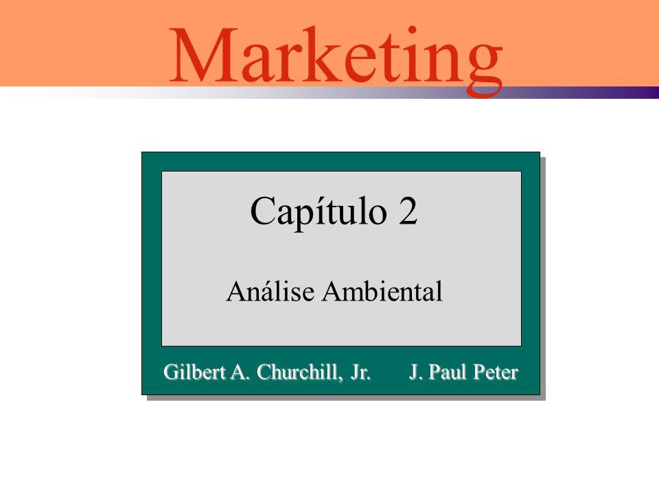 Capítulo 2 Análise Ambiental Marketing Gilbert A. Churchill, Jr. J. Paul Peter